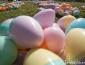 Easter Bunny\'s Secret Stash