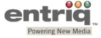 N1 Logo Entriqtag