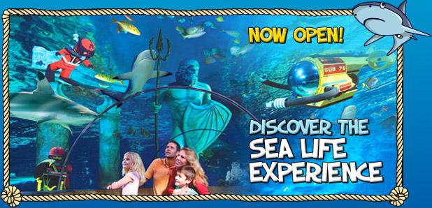 Legoland Aquarium Closing For Remodel