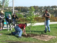 Arbor-Day-Event-4-24-10-040-Web