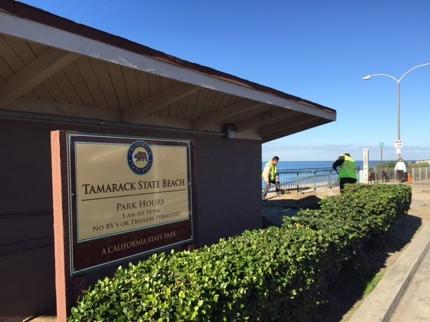 Tamarack State Beach